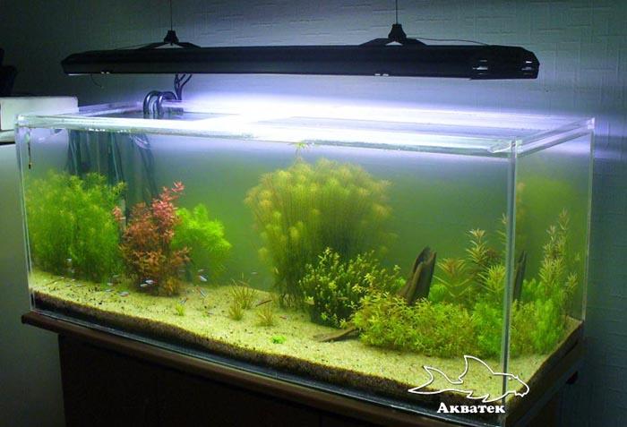 аквариум и внешний фильтр