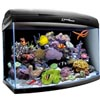 Аквариум Aquael ReefMax Black