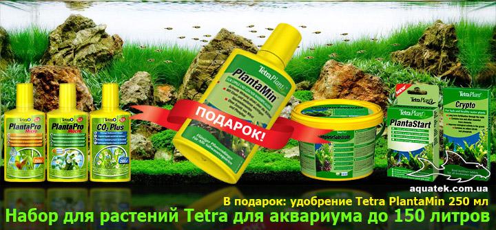 Полный комплект удобрений Tetra для аквариума до 150 литров. В подарок Tetra PlantaMin 250 мл.