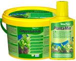 Растения в аквариуме, уход